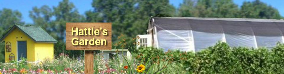 Hattie's Garden