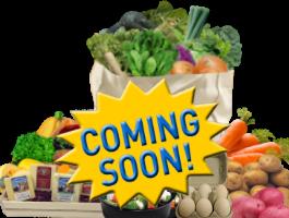 Food-Array-2016-soon