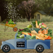 Hattie's Garden Off-Season Delivery Service