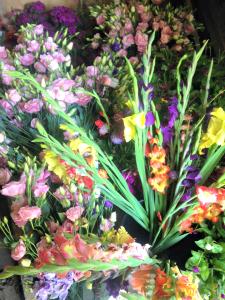 Hattie-Flowers-July2015