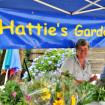 Hattie-HLFM