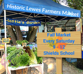 hatties-garden-farmers-market-2016