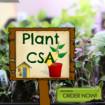 Plant-CSA