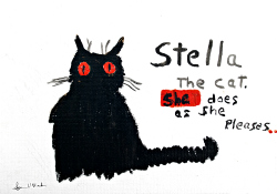 Stella the cat, she does as she pleases