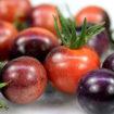 Indigo Cherry