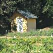 sept-shed