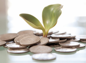 plant-credits