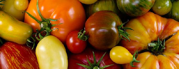 tomato-varieties-header